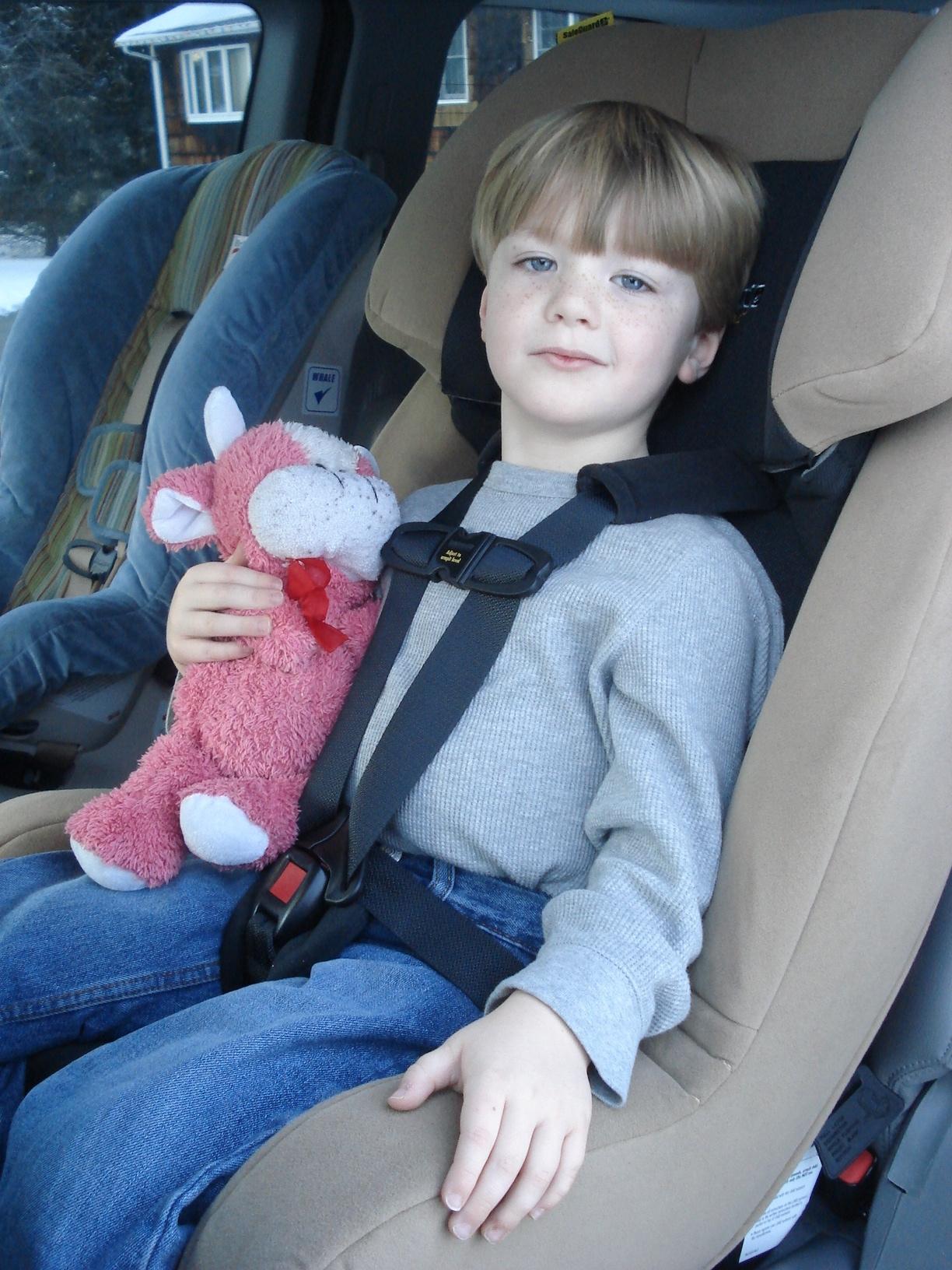 Safeguard Car Seat Reviews
