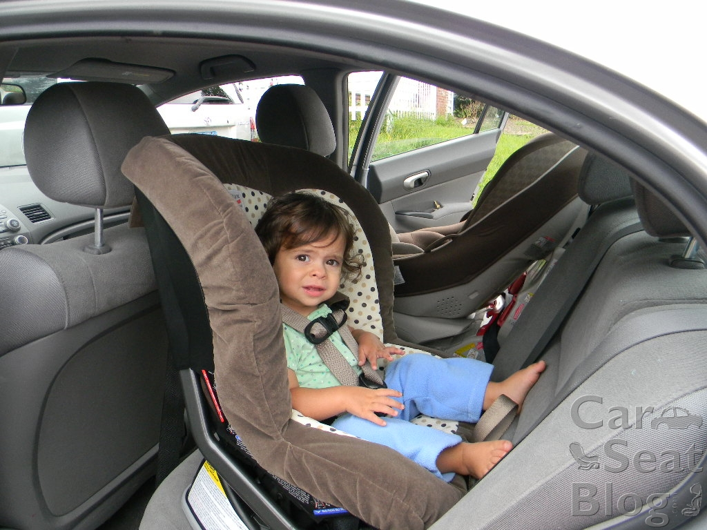 Toddler rf close to 30 in 2008 civic
