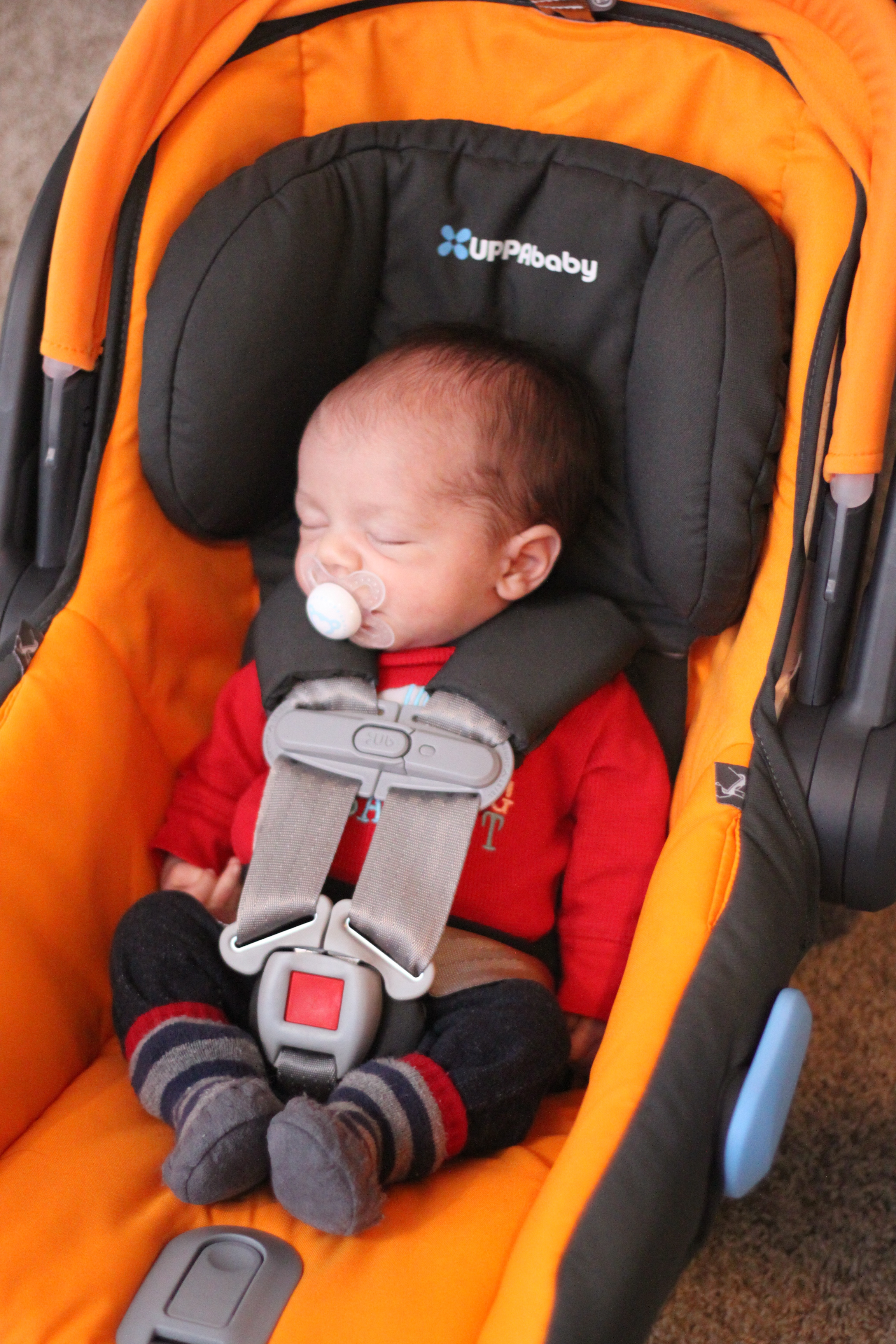 Infant Insert For Mesa Car Seat
