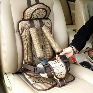 Illegal Chinese Car Seat - bluesky