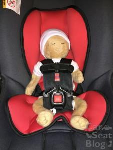 Alpha preemie doll