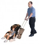 traveling toddler used