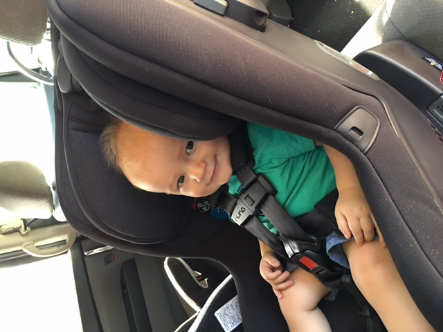 ... product is on the market and in my car I can happily confirm my earlier suspicion- the Rava is something special in the convertible car seat market. & CarseatBlog: The Most Trusted Source for Car Seat Reviews Ratings ...